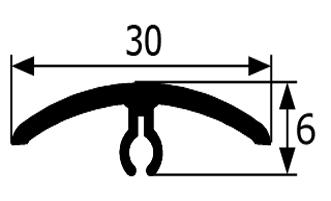 PT301-RAL8001